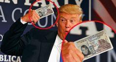 Donald Trump memes - Google Search
