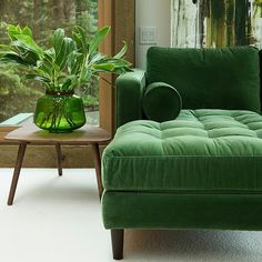 While my home has a sort of calm energy this afternoon I can't help imagine myself curled up on this couch sipping a lukewarm cup of tea while a fresh piney breeze drifts its way indoors... I'm probably wearing wool socks too.. Maybe I'm ready for fall to be here. Maybe I'm more tired than I realize. Maybe I just love green pretty things. Where are you imagining yourself this Sunday? GROWING w/GREEN - The color that brings joy to my soul. Finding myself somewhere else than the present…