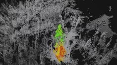 Berkeley project tests tracking imperiled forests with 3D multispectral drone imaging