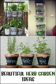 There is nothing nicer than having fresh herbs on hand to complete a meal. So grow your own herbs, be inspired by these herb gardening ideas we have for you ; Palette Herb Garden, Herb Garden Pallet, Container Herb Garden, Herb Garden Design, Diy Herb Garden, Pallets Garden, Indoor Garden, Indoor Plants, Pallet Gardening
