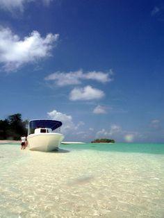 Look at that water!!! Palau