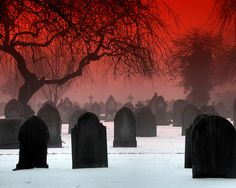 """I love wandering in old """"burying grounds."""" So much history, so many lessons to be learned!"""