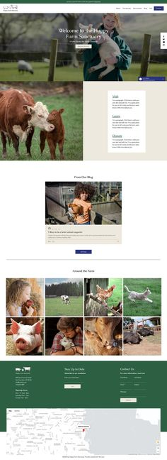 Animal Protection Organization Website Template | Wix Website Templates