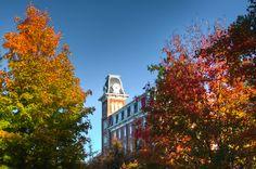 Old Main in the fall  ~University of Arkansas