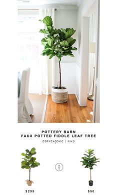 POTTERY BARN FAUX POTTED FIDDLE LEAF TREE | $299 MICHAEL'S ARTIFICIAL FIDDLE LEAF TREE | $50 image via Holy City Chic   See all of our looks for less on Pinterest! This post may contain affiliate link