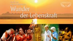 WUNDER DER LEBENSKRAFT - WINNER Cosmic Angel Award 2015 Audience Choice