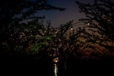 Niagara on the Lake wedding, Kurtz Orchard, Ghorm Photography, Destination Wedding Photographer Ghorm Studio Photography, Canadian Wedding