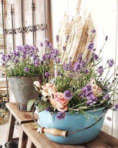 Kvällsbild från butiken #levvackert Rosor och lavendel är en nästan oslagbar kombination. Sen att ha blommorna i gamla byttor då är det toppen. Just nu har vi många fina sommarblommor till din trädgård eller balkong. Ha en fin kväll. #vakrehjem#vintage#interior4you1#inspiration#interior2all#interior2you#inspohome123#gardeningisfun #gardeninspiration #gardening#countrycottage #cottagegarden#garden_styles #garden_explorers#jeannedarcliving