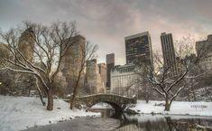 Central Park picture 56 #centralpark #central #park #nyc #newyork  #lifestyle #etatsunis #usa #beautiful #love #beauty #centralparknyc #newyorkcity #thebigapple #manhattan