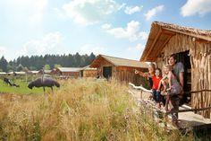 Urlaub in Afrika – mitten in der Lüneburger Heide. Deine Unterkunft liegt mitten im Safari-Park, und bietet mit ihren 2 Schlafzimmern Platz für 4 Gäste.