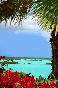 Turks & Caicos Beach