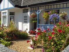 The Beech Tree, St Austell, Cornwall. Pet Friendly Bed and Breakfast Holiday Accommodation in England. Accepts Dogs & Small Pets #WeAcceptPets