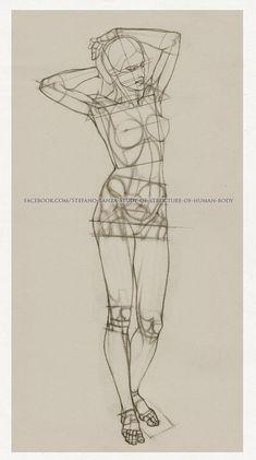 https://www.facebook.com/Stefano-Lanza-Study-of-structure-of-human-body-1479159998770051/ #anatomy #human anatomy #draw #drawing #art #anatomia #disegno #arte