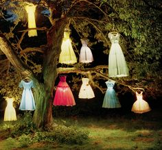"""The lamp tree"" by Tim Walker, England 2002"
