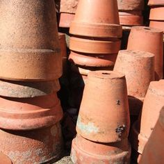 Cut a terracotta pot in half to give it a new life.