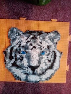 White tiger perler beads by Allison M