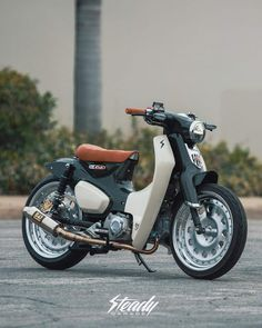 Discover recipes, home ideas, style inspiration and other ideas to try. Honda Cub, C90 Honda, Cub Scout Law, Cub Scouts Wolf, Cub Scout Games, Cub Scout Activities, Camping Activities, Baby Lion Cubs, Bear Cubs
