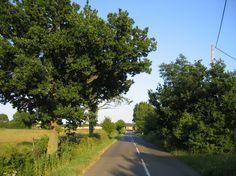 Country road, Lower Gravenhurst, Beds by Rodney Burton, via Geograph