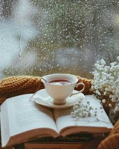 Perfect rainy day with tea and a good book. Perfect rainy day with tea and a good book. Coffee Time, Tea Time, Coffee Coffee, Momento Cafe, Tea And Books, Rainy Days, Good Morning Rainy Day, Cozy Rainy Day, Rainy Night