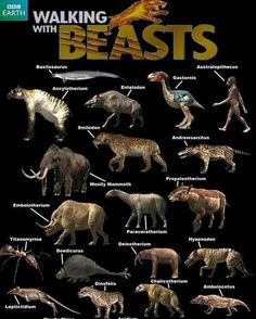 Prehistoric, Comic Books, Dinosaurs, Mammals, Beast, Movie Posters, Instagram, Prehistoric Animals, Film Poster