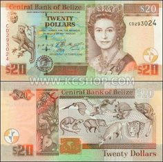 A Look at Central America Money and Currency Kids Math Worksheets, Money Worksheets, Money Notes, Old Money, Thinking Day, Historical Maps, Rare Coins, Queen, Central America