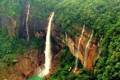 Image result for waterfall beauty surrounded of old beautiful tree