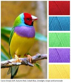 Ideas for knitting ideas inspiration color combos Yarn Color Combinations, Color Schemes Colour Palettes, Colour Pallette, Color Palate, Beautiful Color Combinations, Color Blending, Color Mixing, Colours That Go Together, Color Harmony