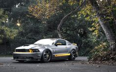 Tag For Ford Mustang Rtr X Wallpaper - Nano Trunk
