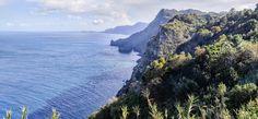 Madeiralla ravintolassa syöminen on varsin keskihintaista, jopa edullista. Katso vinkit lounastamiseen Madeiralla!
