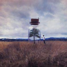 A inspiração de hoje fica por conta do fotógrafo Joel Robison