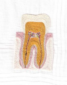 a dissection of a tooth hand #embroidered on a cotton hankie by SheenaRamone