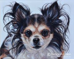 DOG PORTRAIT Ruby - Long Haired Chihuahua Acrylic on canvas x ( x Private Commission: Morgan (Trafalgar, VIC) Ruby - Long Haired Chihuahua Commissioned as a gift in memory of Ruby, a 14 year old Chihuahua. Her portrait is now housed in New Long Haired Chihuahua, Chihuahua Dogs, 14 Year Old, Dog Portraits, My Animal, Dog Love, Sketches, Long Hair Styles, Pets