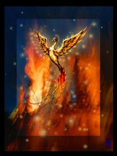"""Rise like the Phoenix after you've been """"burned""""."""