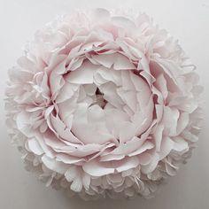 Tiffanie Turner  | Chrysanthemum, 2016