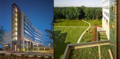 Piedmont Newnan Hospital | Perkins+Will