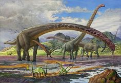 Mamenchisaurus. Art by atrox1. Mamenchisaurus is a sauropod dinosaur genus including several species, known for their remarkably long necks which made up half the total body length.