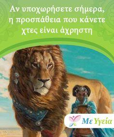 Lion, Survival, Animals, Alternative, Leo, Animales, Animaux, Lions, Animal