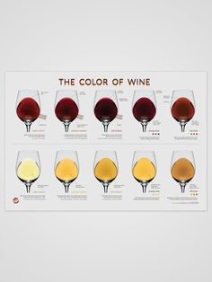 Wine color poster from winefolly.com