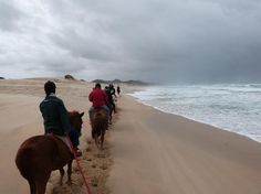 Horse rides on the beach even in rain conditions its amasing Bay Lodge, St Francis, Horse Riding, Great Deals, Wonderful Time, South Africa, Trip Advisor, Beaches, Rain