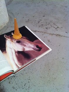 amazing! horse + ice cream cone = unicorn