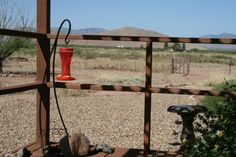 Hummingbird feeders and birdbaths attract many birds to Hummingbird Ranch Vacation House, in the beautiful Sulphur Springs Valley of Southeastern Arizona.
