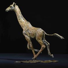 Giraffe Female 2017 one of a set of three running giraffe sculpted using research from my trip to Africa in 2016.  Details on my website (link in bio) #art #bronze #sculpture #giraffe #africa #safari #research #travel #africanwildlife #limitededition #bronze #bronzesculpture #statue #newwork #new #forsale #website @lewa_wildlife @sirikoilodge