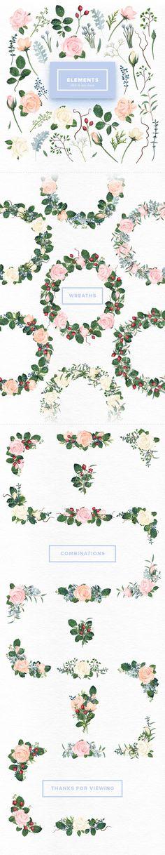 Watercolor Roses Set by Kotulska on @creativemarket