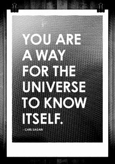 You are The universe you are a way for the universe to know itself, Carl Sagan