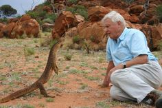 Attenborough meeting an argus monitor lizard in Western Australia (Life in Cold Blood, 2006) © Miles Barton - © Miles Barton