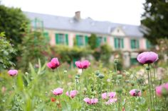 If you love flowers as much as Monet did – walk in the garden of his house and choose the flowers you like. Then go down to the gift shop – which was previously the artist's workshop – and buy the seeds of the flowers that you have just seen in the garden of one of the major Impressionists. . #claudemonet #givergny #artist #impressionist #monet #artlovers #art #garden #impressionism #flowers Claude Monet, Love Flowers, Van Gogh, Impressionism, Parisian, Seeds, Workshop, Lifestyle, Garden