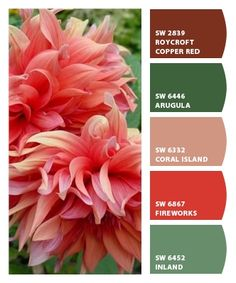 ‿✿⁀ Can a flower look delicate and sassy at the same time? Guess like leather and lace ‿✿⁀ ColorSnap by CNH Nature Color Palette, Green Colour Palette, Colour Palettes, Colour Schemes, Color Combos, Color Patterns, Garden Mural, Coming Up Roses, Design Seeds