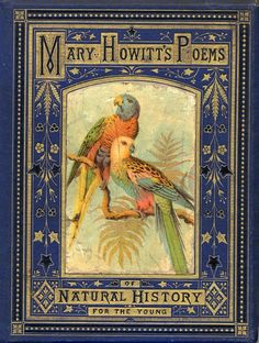 Sketches of Natural History: Or, Songs of Animal Life by Mary Botham Howitt. Illustrated by Hector Giacomelli, London: Thomas Nelson and Book Cover Art, Book Cover Design, Book Design, Vintage Book Covers, Vintage Books, Old Books, Antique Books, Illustration Art Nouveau, Beautiful Book Covers