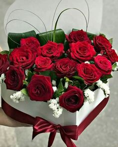 Flowers Gif, Flowers For You, Exotic Flowers, Amazing Flowers, Beautiful Roses, Beautiful Flowers, Flower Phone Wallpaper, Red Wallpaper, Happy Anniversary Wishes