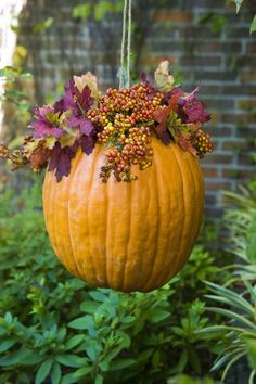 thanksgiving | fall